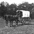 Ambulance wagon on the Bull Run battlefield, 1861 (crop).jpg