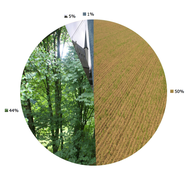 Amel (Belgium): Land use in 2004: 50% agriculture, 44% forest;  5% construction, 1 others