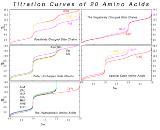 Amino acid - Composite of titration curves of twenty proteinogenic amino acids grouped by side chain category