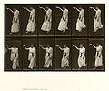 Animal locomotion. Plate 135 (Boston Public Library).jpg