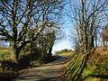 Approaching the crossroads - geograph.org.uk - 670739.jpg