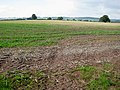 Arable land around Llanwarne Court - geograph.org.uk - 978739.jpg