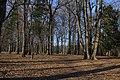 Arboretum Lednicke Rovne - panoramio (1).jpg