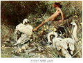 Arthur Wardle (1864-1949) - An Idyll of Summer (1900) vintage colour photo.png