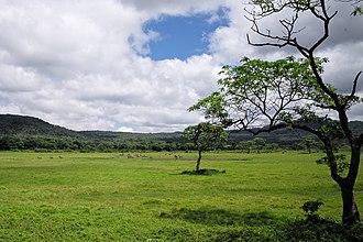 Arusha National Park - Image: Arusha National Park Landscape
