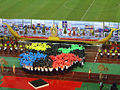 Asian Cup Opening Ceremony II.jpg