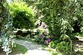 Asiatic garden, ZOO Jihlava.jpg