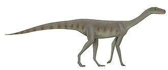 2010 in archosaur paleontology - Asilisaurus