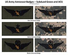 army astronaut badge - 500×400