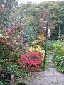 Autumn garden - Flickr - peganum.jpg