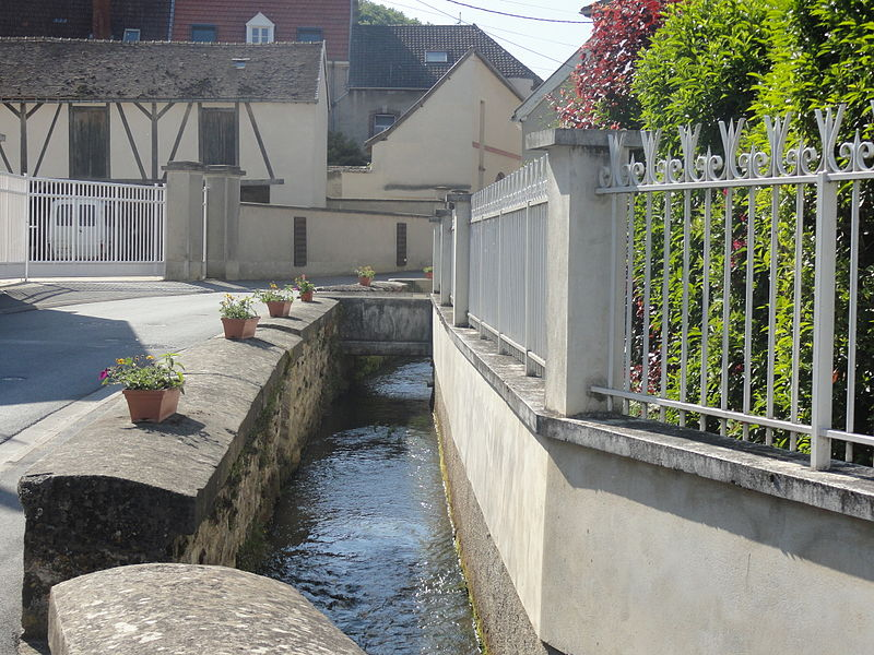 Un bras de la Livre dans le village d'Avenay-Val-d'Or (Marne, France).