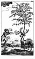 Bürger Münchhausen (1786) 34a.png