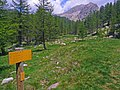 Balise 265 - Footpath to Lac Scluos - panoramio.jpg