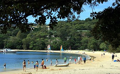 How To Get To Balmoral Beach With Public Transit About The Place