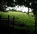 Barley-with-Wheatley Booth, UK - panoramio (3).jpg