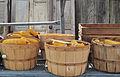 Baskets of Corn.jpg