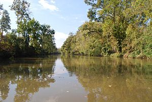 Bayou Teche - Bayou Teche photographed from a canoe, looking downstream, St. Landry Parish, Louisiana.