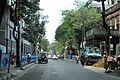 Beadon Street - Kolkata 2015-11-09 4576.JPG