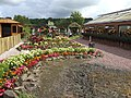 Bedding display at Rosebank Garden Centre - geograph.org.uk - 503495.jpg