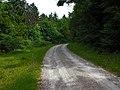 Bei Kaltohmfeld Richtung Holungen - panoramio (3).jpg
