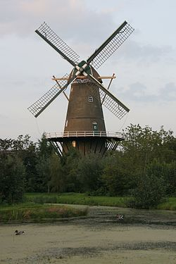 Wind mill in the middle of some bushes