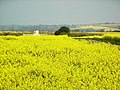 Berryfield Farm - geograph.org.uk - 408420.jpg