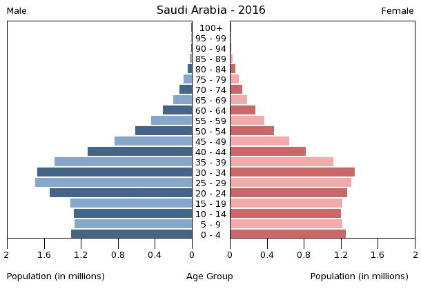 Bevölkerungspyramide Saudi Arabien 2016