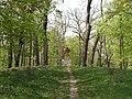 Bila Tserkva, Kyivs'ka oblast, Ukraine - panoramio (101).jpg
