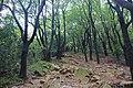 Binhu, Wuxi, Jiangsu, China - panoramio (44).jpg