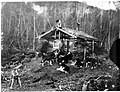 Black and white image of a man in front of log cabin surrounded by dogs.jpg
