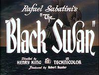 Black swan 13.jpg