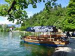 Bled (8897551237).jpg