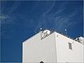 Blue-sky-white-wall.jpg