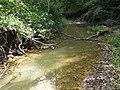 Blunt Run (Muskingum County, Ohio, USA) 4 (21501574611).jpg