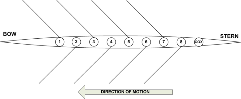 The boat positions within an 8+ rowing shell BoatPositions.gif