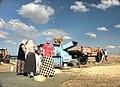 Bogazliyan Kichererbsen-Ernte 20-09-2003.jpg