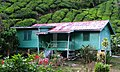 Boh Tea 'green-house' -) - panoramio.jpg