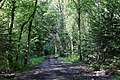 Bois des Glaisins (51195765286).jpg