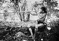 Borneo; a Kenya man demonstrating the blowpipe. Photograph Wellcome M0010879.jpg