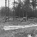 Bosbewerking, arbeiders, boomstammen, werkzaamheden, Bestanddeelnr 251-9622.jpg