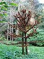 Botanični vrt (3990917002).jpg