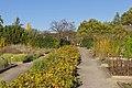Botanischer Garten Berlin-Dahlem 10-2014 photo19 alley.jpg