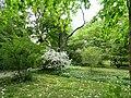 Botanischer Garten Freiburg - DSC06485.jpg
