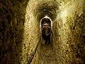 Bran Castle (24341084365).jpg