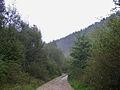 Bresnička reka 2.JPG