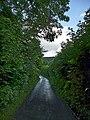 Bridgend Lane, Bucknell - geograph.org.uk - 1526961.jpg