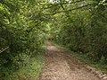 Bridleway north of Ashengrove - geograph.org.uk - 580352.jpg