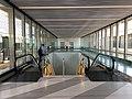 Brightline Station Downtown Miami (41842256824).jpg