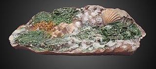 brique décorée de rocaille jaspée