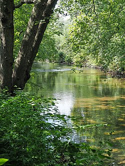 Bronx River from Shoelace Park.jpg
